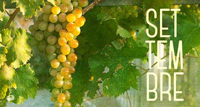 Settembre - Frutta e verdura di stagione