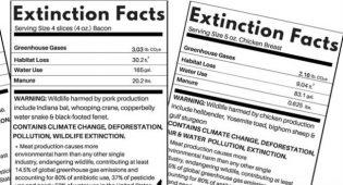 extincion facts