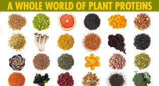 proteine-vegetali-cia