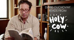 david-duchovny-porca-vacca