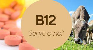 Vitamina B12: tutto quello che c'è da sapere