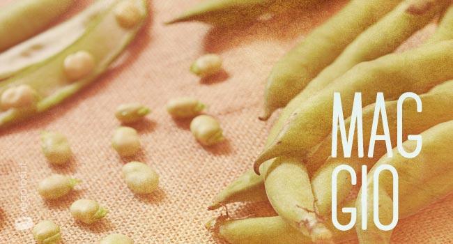 Scopri la frutta e verdura di stagione
