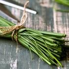 Erba cipollina - Ricette, Coltivazione, Proprietà