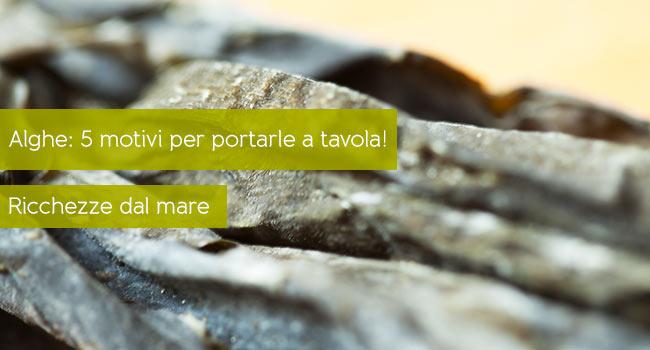 Alghe in cucina 5 motivi per consumarle - Alghe in cucina ...