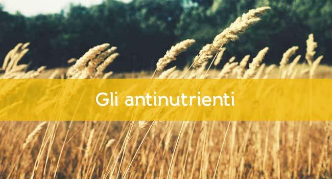 Antinutrienti
