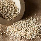 quinoa-proprità e valori nutrizionali