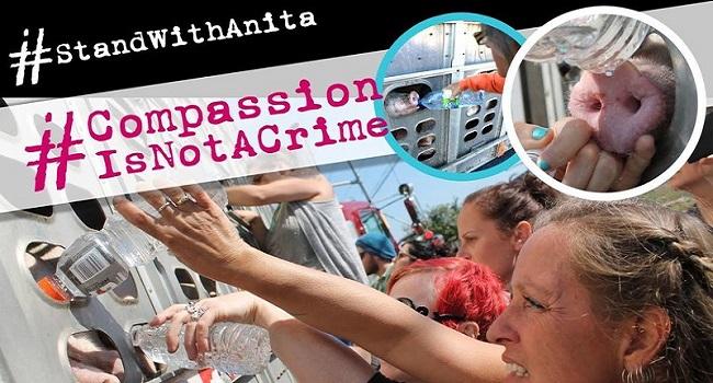 Petizione per Anita Krajnc