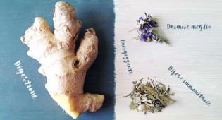 Tisane: ricette perfette per ogni stagione