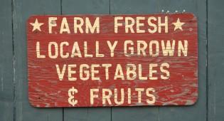 vertical farm vegana