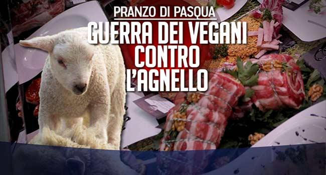 Porta a Porta vegani agnello
