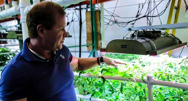 Farm vegana philadelphia