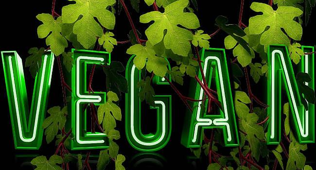 vegan-1161192_1280