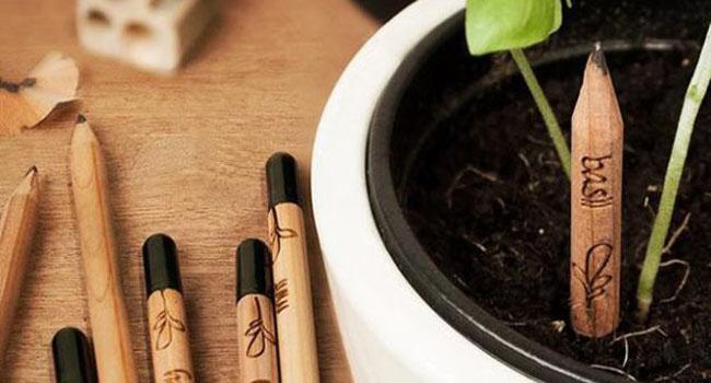 sprout+matita