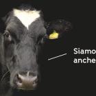 Giornata nazionale della carne Torino