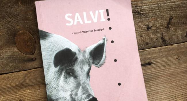 Salvi Safarà Editore
