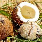 olio o burro di cocco