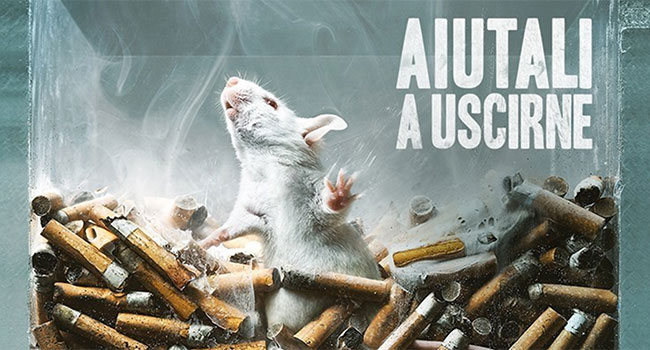 Sperimentazione animale decreto 26