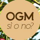 L'Italia non è OGM free ma le modifiche genetiche non vanno temute, vanno capite