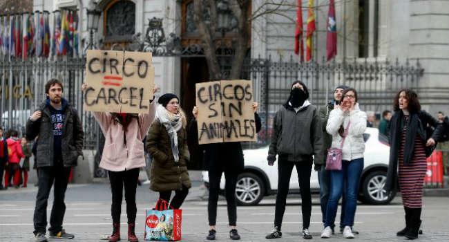 proteste animalisti circo