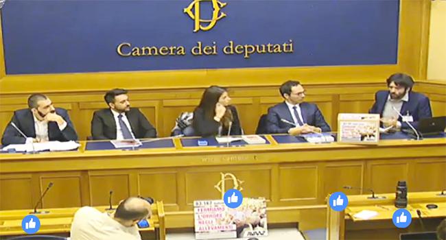 Parlamento Giulia Innocenzi