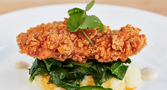Carne pollo anatra laboratorio