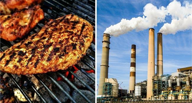 Associazioni ambientaliste carne