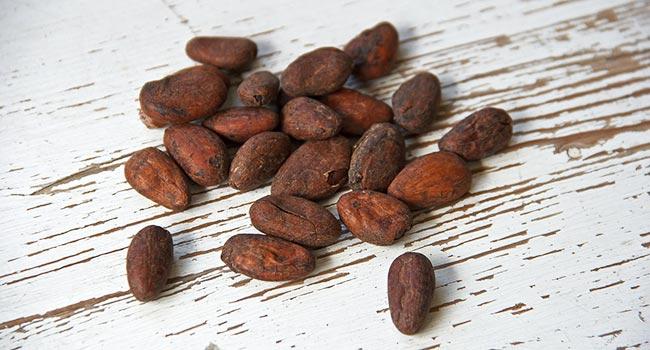 Fave di cacao ricette