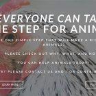 Non mangiare pollo