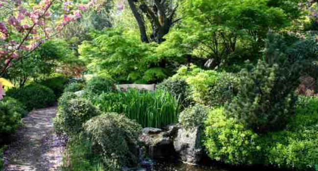 orto botanico roma