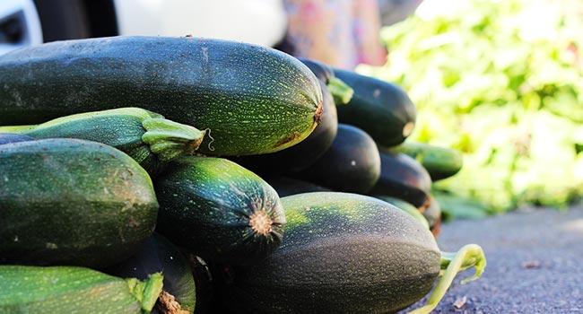 Come cucinare le zucchine la guida completa for Cucinare le zucchine
