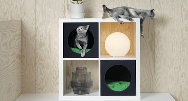 Ikea in arrivo prodotti per cani e gatti ma non in for Negozi arredamento tipo ikea
