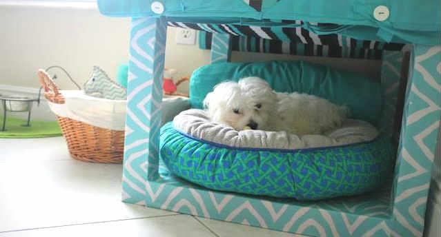 Ikea in arrivo prodotti per cani e gatti ma non in italia per ora - Ikea prodotti per ufficio ...