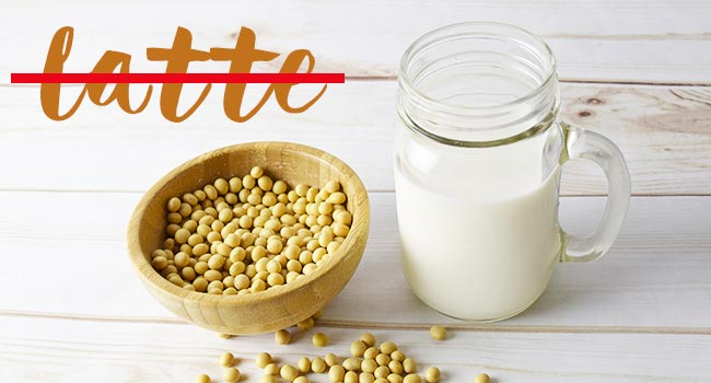 Sentenza europa latte soia