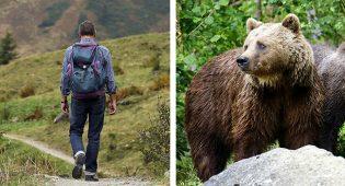 Orso_escursionista Trento attacco