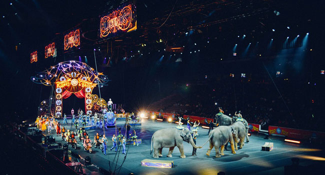 Circo- abolizione uso animali