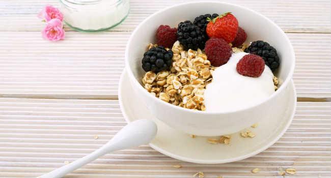 yogurt fermentazione