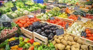 """Società di Nutrizione Umana """"Sì alle diete veg, il Governo istruisca la popolazione"""""""
