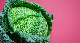 Prevenzione cancro al seno alimentazione vegetale