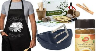 Festa del papà: 11 idee regalo 100% vegane per un pensiero d'amore