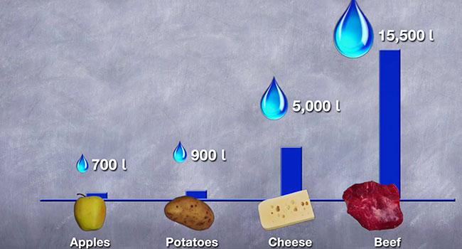 consumo acqua dieta