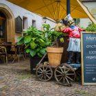 Ristorante-petizione piatti vegetali