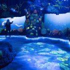acquario-virtuale