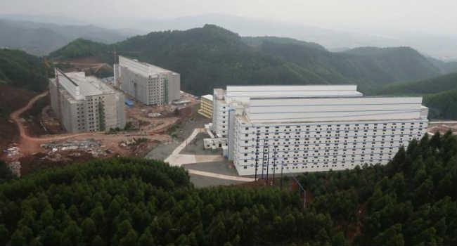 allevamenti intensivi multipiano Cina
