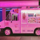 camioncino gelati vegani