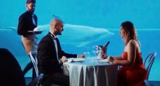 Cena acquario Genova