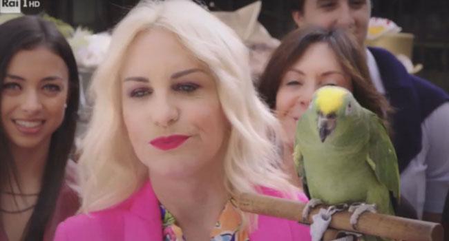Antonella Clerici Portobello pappagallo