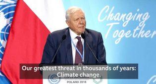 """""""Il più grande disastro creato dall'uomo"""": il cambiamento climatico e il """"silenzio"""" sulla carne"""
