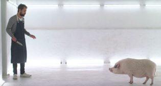 film casa de carne