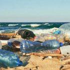 plastica monouso normativa europea