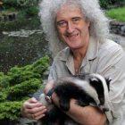 Brian May animalista